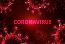 Coronavirus infects 15 people from Dubai