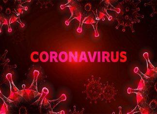 Coronavirus infects 15 people from Dubai