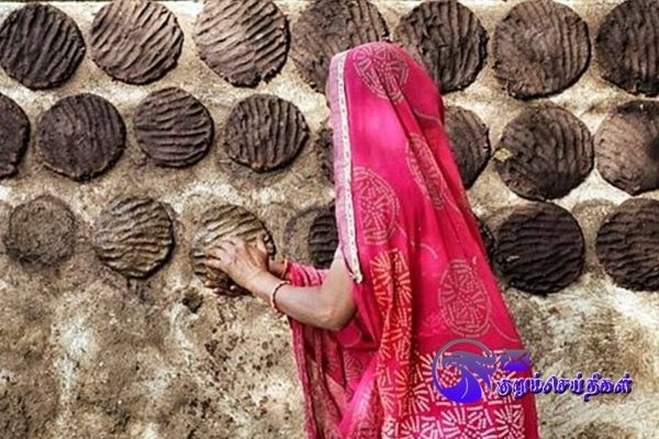 Complaint of missing cow dung in Chhattisgarh